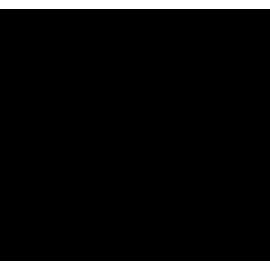 Colle Refractaire 1 Tube  30 Ml  - Jotul